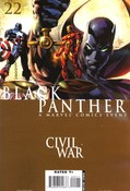 Black Panther #22 cover