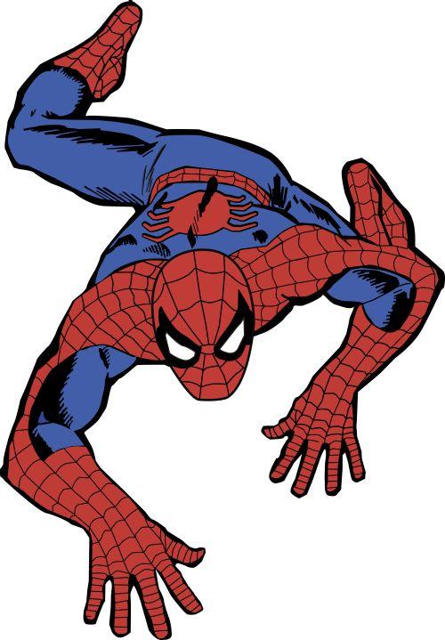 Black Cat Spider Man Tv