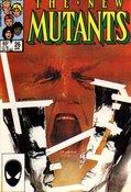New Mutants (1983) #26 cover