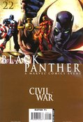 Black Panther (2005) #22 cover