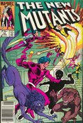 New Mutants (1983) #16 cover