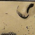 axm18-8.jpg